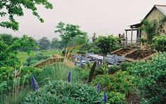 Advance #Australia with a #sustainable #garden. Some handy tips here on how to tread lightly on our natural landscape.
