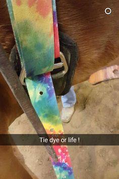❤️ Fallon Taylor, Rodeo, Tack, Flow, Horse, Photos, Pictures, Horses, Bull Riding