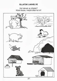 18 nowych pomysłów wybranych specjalnie dla Ciebie - Poczta o2 Printable Preschool Worksheets, Preschool Lesson Plans, Toddler Preschool, Kids Learning Activities, Educational Activities, Animals And Their Homes, Kids Daycare, School Clipart, Forest Animals