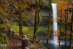 12 Hiking Spots In Oregon That Are Completely Out Of This World Oregon Trail, Oregon Hiking, Oregon Coast, Portland Oregon, Places To Travel, Places To See, Visit Oregon, Oregon Waterfalls, Hiking Spots