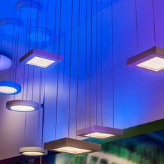 Chromaglo Spectrum Square LED Pendant Light