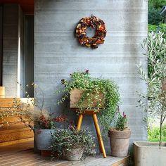 いいね!811件、コメント1件 ― yukoさん(@yuko_casa)のInstagramアカウント: 「2017.9.25 ・ ・ エントランスを秋バージョンに。 スタジオクリップで購入したリースが 今年の秋も活躍してくれています。 夏は花を浮かべていたブリキのバケツには ドライを入れてみました。…」 Container Plants, Container Gardening, Gardening Tips, Small Garden Corner, Small Outdoor Spaces, Flowering Trees, Shade Garden, Garden Styles, Garden Paths