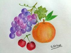 Fruits # Colored pencil drawing