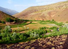 Mendiz mendi: Maroc 2010 :Ighil n M'Goun (4088 m) et Achabou n' M'gouna (gorges du Mgoun)