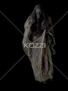 studio shot of human skeleton. - Studio shot of human skeleton over dark background.