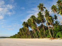 Gorgeous beach: The pristine white sands of Ngurbloat beach in Southeast Maluku.