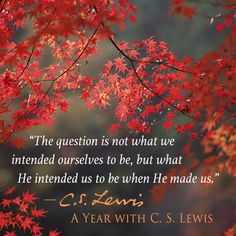 The question is not what we intended ourselves to be, but what He intended us to be when He made us. ~C. S. Lewis, 'A Year with C. S. Lewis'