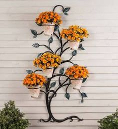 A sculptural metal tree-shaped trellis with five holder rings amongst the limbs that can support flower pots in the spring, herbs in the summer, little pumpkins or mums in the fall, poinsettias around the holidays, or anything you can dream up. Metal Trellis, Arbors Trellis, Wall Trellis, Diy Garden Decor, Garden Art, Garden Design, Planter Garden, Tree Garden, House Plants Decor