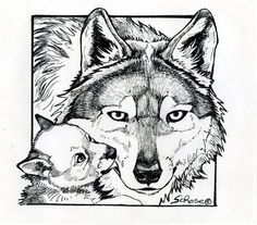 beautiful wolf coloring pages for adults