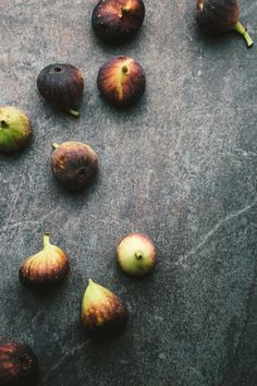 Fig fall gathering