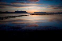 Messolonghi lagoon, Aitoloakarnania Prefecture, west Greece.