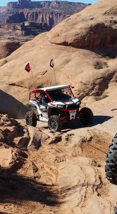 """A Custom Built """"Dog Cage"""" by Vent Racing on a  Polaris RZR XP 1000 2-seat in Moab, Utah."""