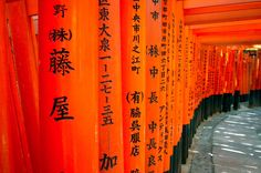 We got to visit Kyoto, the former capital of Japan.  While we were there, we hiked through Fushimi Inari Shrine, which is home to thousands of Torii.