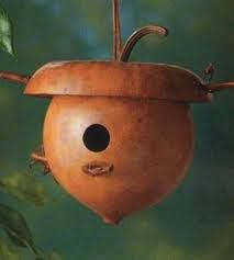 gourd bird houses - Google Search