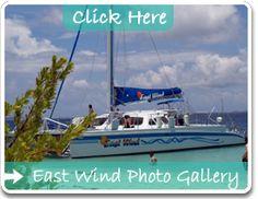 29 Best Puerto Rico Images Puerto Rico Fajardo Diving