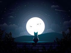 "Good Night!   no words - ""Wonder"")"