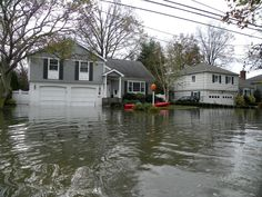 Image result for water damage restoration raleigh