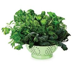 GREEN LEAFY VEGETABLES  If you're really looking for a highly nutritious food that will fill you up for hours, you can't beat green leafy vegetables. From kale to spinach to Swiss chard, these fibrous greens (eaten raw or gently sautéed with a little olive oil) are delicious and definitely keep hunger at bay.