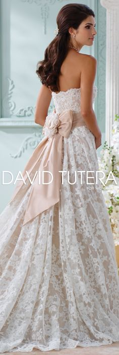 The David Tutera for