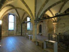 Château de Mayenne, 53 il n'est pas sans rappeler celui voisin de Laval. Situé sur une plate-forme rocheuse dominant la Mayenne, il est au coeur de la ville. Depuis sa desaffectation, au 17°s, il a perdu une bonne part de ses défenses. Des travaus récents ont révélé qu'une partie du logis, remanié jusqu'au 18°s, remonte aux environ de l'an 900 ce qu en fait l'un des plus anciens chateaux de France