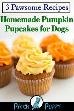 Dog Cake Recipes, Easy Dog Treat Recipes, Dog Biscuit Recipes, Healthy Dog Treats, Dog Food Recipes, Healthy Food, Homemade Dog Cookies, Homemade Dog Food, Fondant Bow