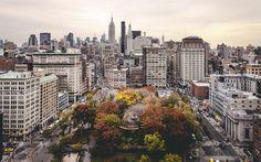 New York Looks to Expand Medical Marijuana Program