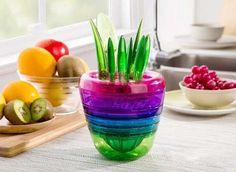 Fruit Plant,kit Com 10 Produtos+facil De Usar+facil Guardar - R$ 149,00 em Mercado Livre