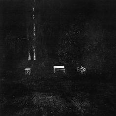 from Asylum by Dag Alveng