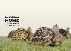 """Mr.Children """"HOME"""" TOUR 2007~in the field~ [DVD] DVD ~ Mr.Children 2008.8.6 release"""