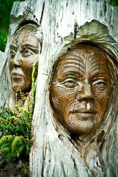 Tree carvings at the Abel Tasman National Park in New Zealand. These carvings are next to a lovely little shop/gallery. Auckland, Abel Tasman National Park, Maori Art, Tree Carving, Kiwiana, New Zealand Travel, South Island, Green Man, Tree Art