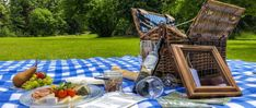 Picknick im Park Cafe Restaurant, Picnic Blanket, Outdoor Blanket, Villa, Merian, Park, Native Plants, Exotic Plants, Grill Party