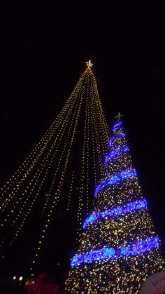 Sea World San Diego Christmas tree.