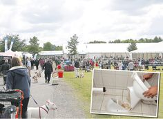 #Thugs trash #toilets at #Newbury #dogs #dogshows #dogshowing