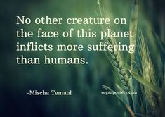 No other creature on the face of this planet inflicts more suffering than humans. - Mischa Temaul #vegan (251) Twitter