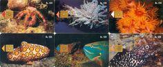 10 Phonecard / Tarjeta Telef Venezuela Cantv  Corales y Peces de Vzla
