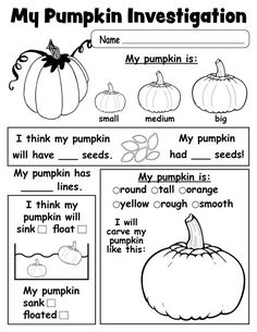 Free Printable Pumpkin Investigation Worksheet (use as group activity at circle, preschool is no place for worksheets)
