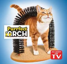 Purrfect Arch™ @ Harriet Carter