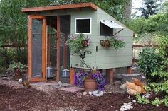 Dream chicken coops.