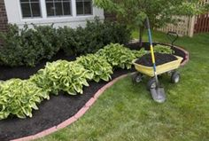 Inexpensive landscaping idea