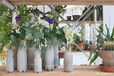 concrete bottles with flowers