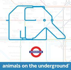 arthouselicensing - Animals on the Underground - Meet theAnimals