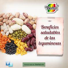Existen casi 20 mil especies, pero menos del 20% son comestibles. Las leguminosas ayudan a proporcionan nitrógeno al suelo para mejorar así el rendimiento de las cosechas, pero lo más importante es que es un alimento nutritivo, ya que al combinarlas con cereales obtienes una proteína completa. http://www.therbal.mx/sanamente/beneficios-saludables-de-las-leguminosas.php