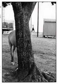 Elliott Erwitt 1963 Bahia, Brazil