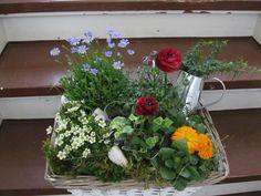 Blumen im Korb