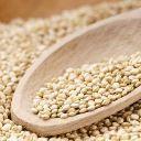 Quinoa: a proteína em grão