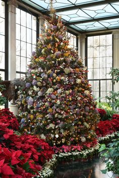 Dried-flower tree at Winterthur Beautiful Christmas Trees, Family Christmas, Christmas Holidays, Merry Christmas, Christmas Tree Decorations, Holiday Decor, Xmas Trees, Christmas Plants, Victorian Christmas