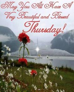Have a beautiful Thursday quotes quote days of the week thursday thursday quotes happy thursday happy thursday quotes Good Night Blessings, Good Night Wishes, Morning Blessings, Good Morning Messages, Good Morning Greetings, Good Morning Quotes, Afternoon Quotes, Morning Prayers, Good Morning Happy Thursday