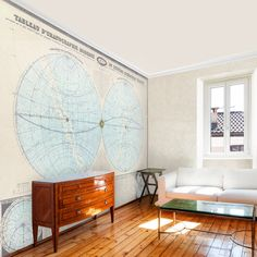 Swag Paper Double Hemisphere 1864 Map Self-Adhesive Wallpaper - $211.99 @hayneedle