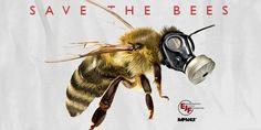 saves bee's | Rapanui - Save the Bees T-Shirt