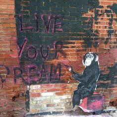 Graffiti/Street Art in Toronto by Thierry Guetta aka Mr. Urban Street Art, Urban Art, Toronto Street, Collage Illustration, Illustrations, Arts Ed, Street Art Graffiti, City Art, Amazing Art